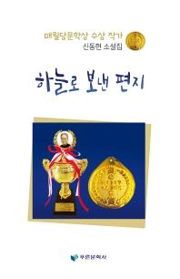 하늘로 보낸 편지 : 신동현 소설집  책 표지