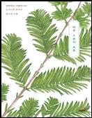 하루 5분의 초록 책 표지